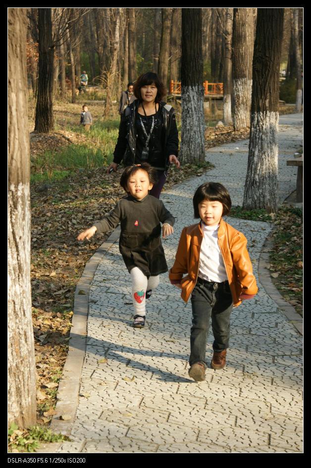 秋游大兴北京野生动物园