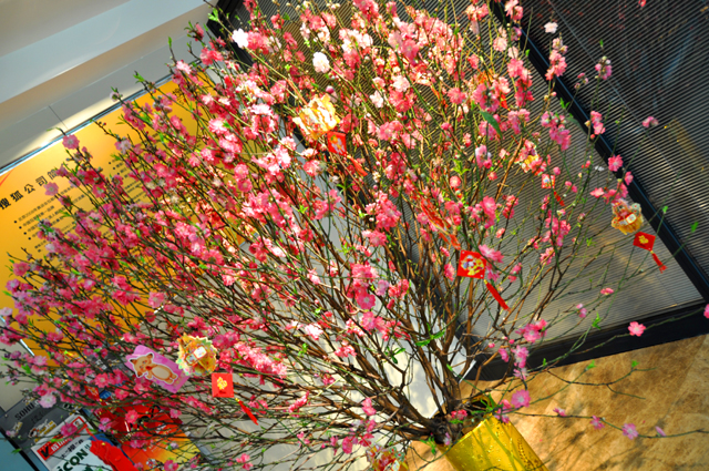 ps:公司已经放上了桃花树,新年新气象,我的愿望已经挂上去了,希望可以
