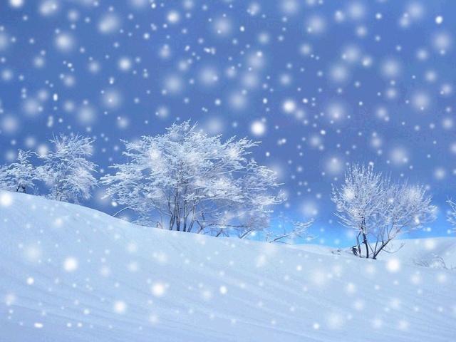雪花飄飄春風瀟瀟是那首歌的歌詞