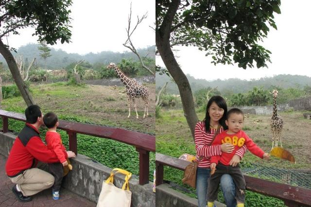 台北市动物园---半日游 (2)