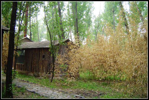 树林中的小木屋——北京怀柔休闲记